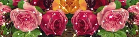Цветы на мой мир