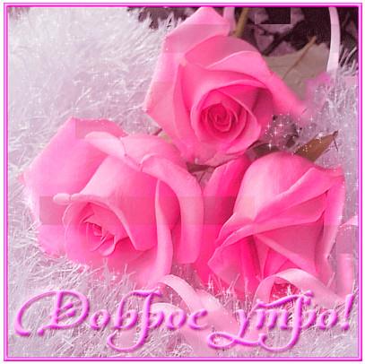 Доброе утро картинки с красивыми цветами