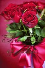 Цветы на самой красивой - Открытки цветы на Одноклассников