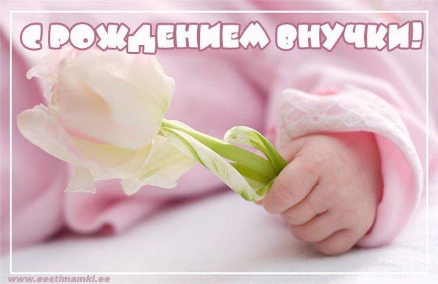 Картинки для открытки рождение внучки 399