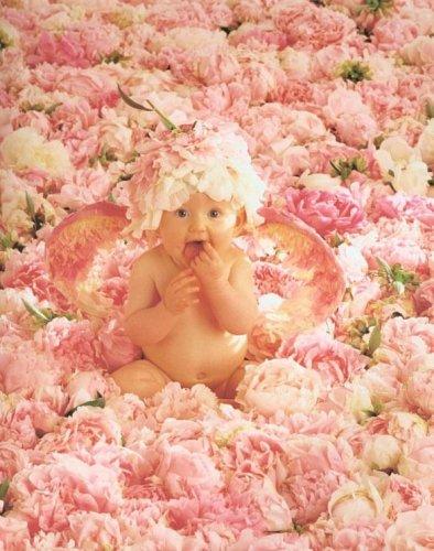 поздравления с рождением племянницы тете картинки