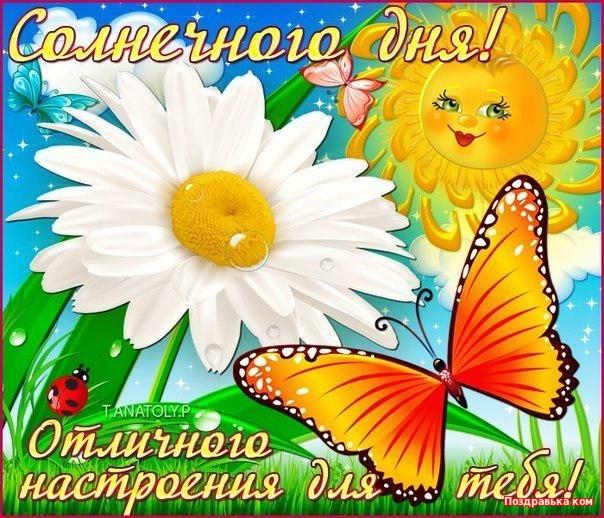Вставить, открытка удачного солнечного дня
