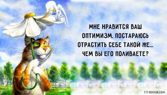 СПбГПМУ СПбГУАП стих о жизни оптимистичные наличными
