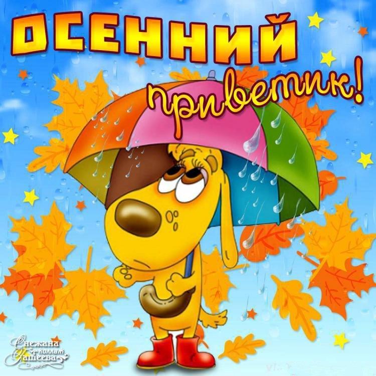Красивая осень картинки с надписями прикольные хорошее настроение, днем рождения