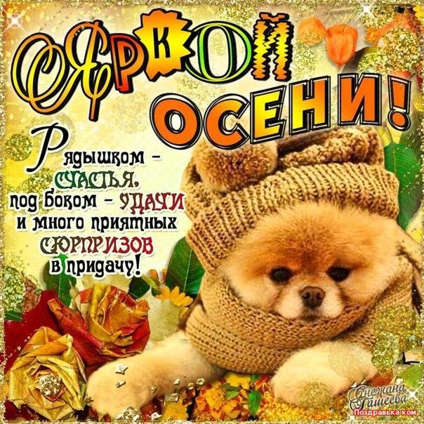 Красивые картинки поздравления с началом осени, радость счастье денежное