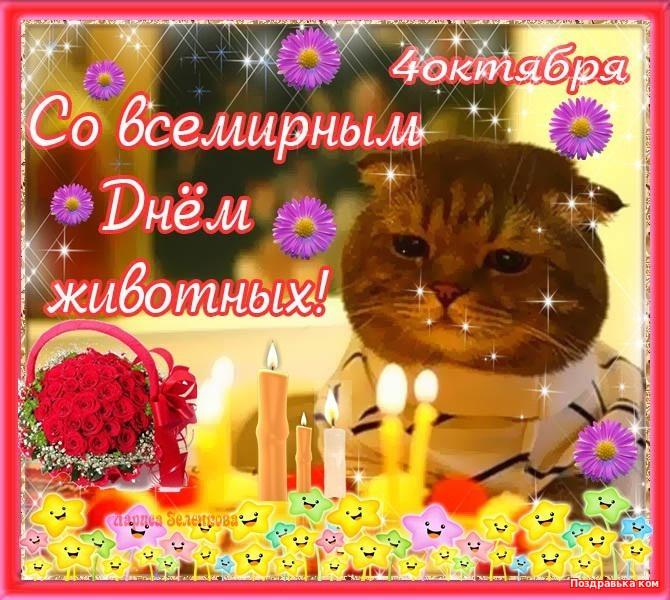 Пожеланиями, открытки с днем животных