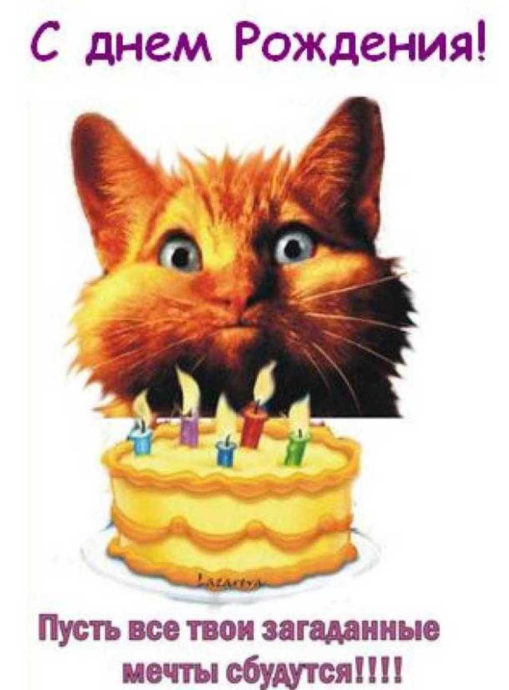 Ксю с днем рождения поздравления с