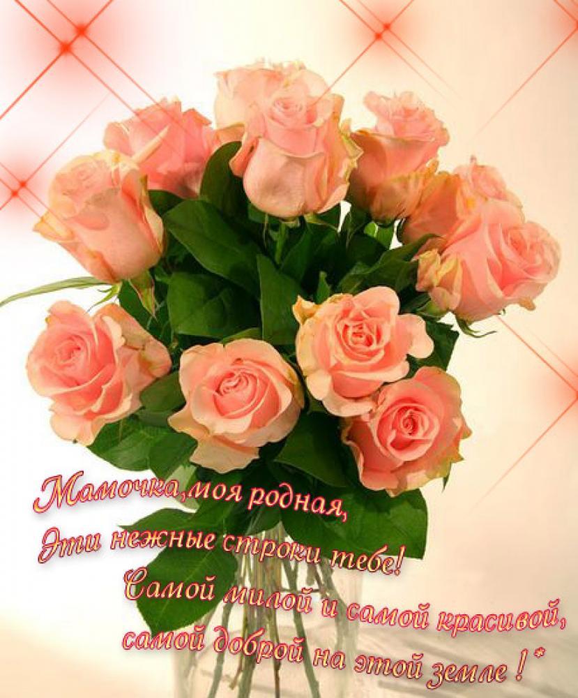 Собираем цветы для гербария