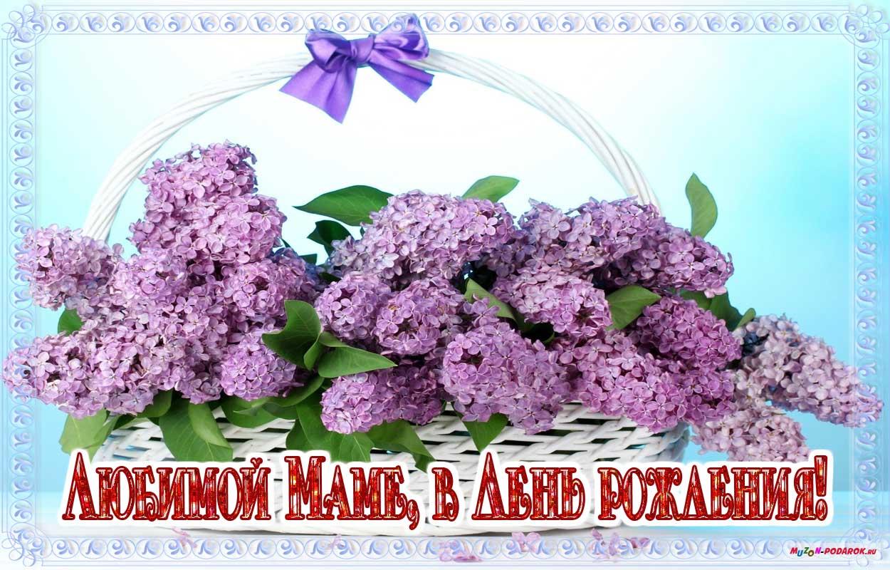 Картинки цветов на день рождения маме