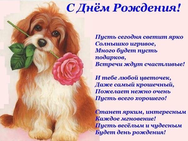 http://pozdravka.com/_ph/24/975013356.jpg