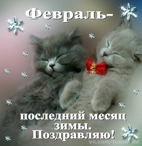 pozdravka.com