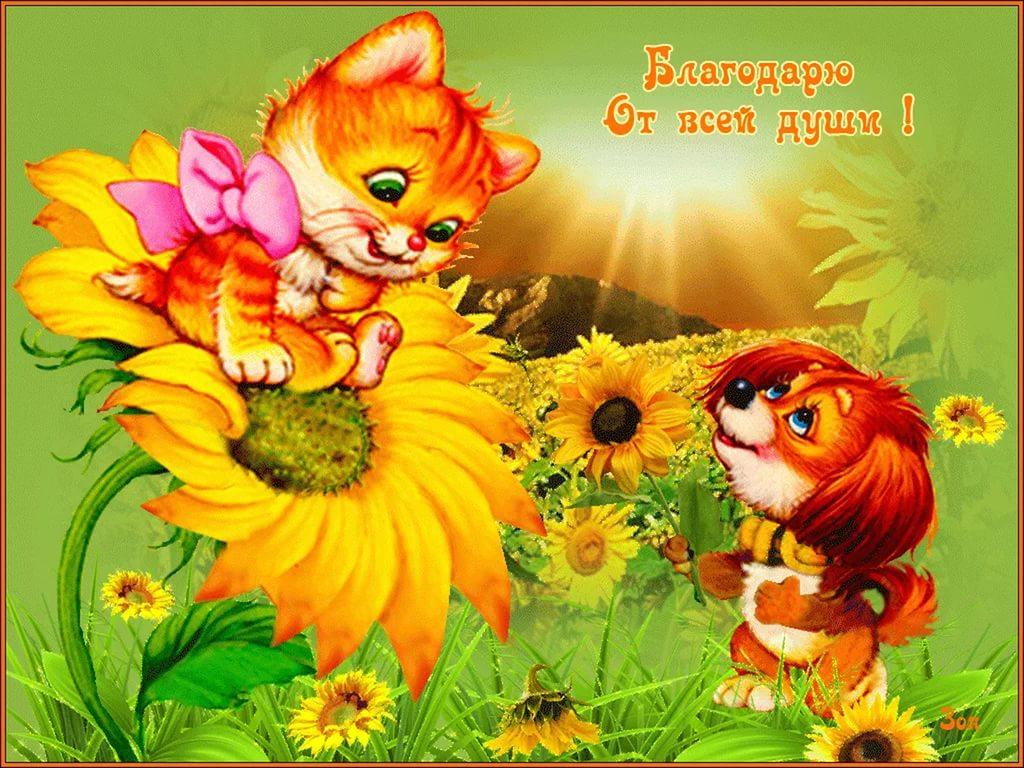 Красивые открытки с цветами подруге 682